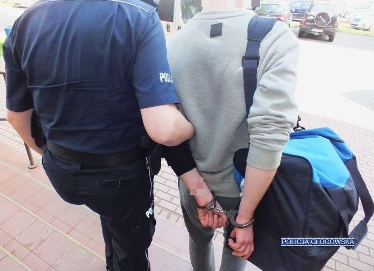 Areszt dla dilera